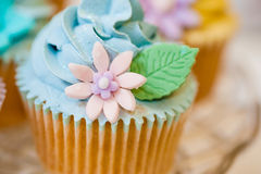 Cupcake selection in pastel colors Royalty Free Stock Images