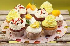 Cupcake_stock_1 royaltyfria foton