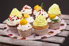 Cupcake_stock_2 royaltyfri fotografi