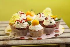 Cupcake_stock_3 royaltyfria bilder