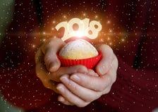Cupcake ter beschikking met de aantallen 2018 Stock Foto