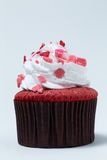 Cupcake topped with whipped cream Royalty Free Stock Photography