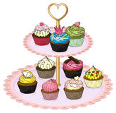 A cupcake tray with cupcakes Stock Images