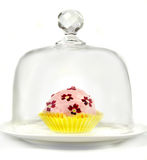 Cupcake Under Glass Royalty Free Stock Photography