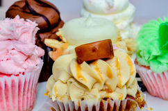 Cupcake variety Royalty Free Stock Photography
