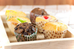 Cupcake various flavors Stock Image