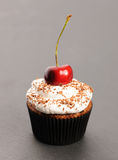 Cupcake with whipped cream and cherry Stock Image