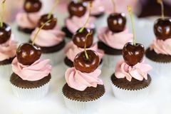 Cupcake with whipped cream and cherry. Delicious chocolate cake baked in a paper cup with pink butter-cream icing topped with a fresh cherry Royalty Free Stock Image
