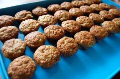 cupcakes δίσκος Στοκ Εικόνες