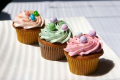 cupcakes διακοσμημένος γαστρο&n Στοκ Εικόνα