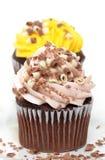 cupcakes δύο στοκ εικόνα