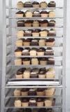 cupcakes εν αφθονία Στοκ Εικόνες