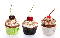 cupcakes θέστε στοκ εικόνα με δικαίωμα ελεύθερης χρήσης
