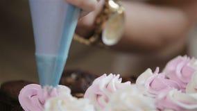 cupcakes διακοσμώντας φιλμ μικρού μήκους