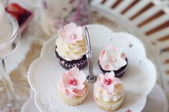 Cupcakes και μίνι cupcakes Στοκ εικόνες με δικαίωμα ελεύθερης χρήσης