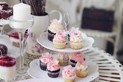 Cupcakes και μίνι cupcakes Στοκ φωτογραφία με δικαίωμα ελεύθερης χρήσης