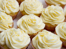 cupcakes λεμόνι Στοκ εικόνα με δικαίωμα ελεύθερης χρήσης