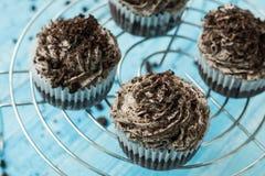 Cupcakes με την κρέμα σοκολάτας για το επιδόρπιο Στοκ Εικόνες