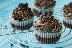 Cupcakes με την κρέμα σοκολάτας για το επιδόρπιο Στοκ Φωτογραφίες