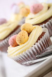 cupcakes Πάσχα Στοκ εικόνες με δικαίωμα ελεύθερης χρήσης
