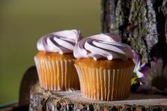Cupcakes στον ήλιο στοκ εικόνα με δικαίωμα ελεύθερης χρήσης