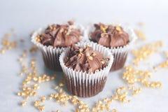 cupcakes photographie stock libre de droits