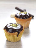 Cupcakes. Two muffins with a chocolate topping royalty free stock photo