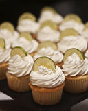 Cupcakes. Key lime cupcakes with lime slices on top Stock Photos