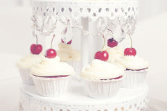 Cupcakes. Freshly made red velvet cupcakes topped with a swirl of cream and a red cherry royalty free stock images