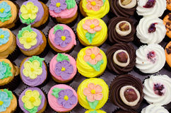 Cupcakes. A tray of variety of colourful cupcakes for catering Royalty Free Stock Photography