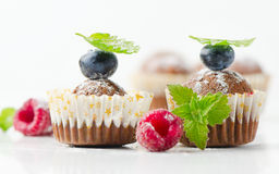 Cupcakes. With fresh blueberries on white.Selective focus stock image
