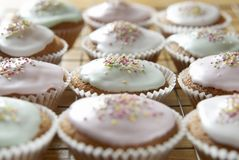 Cupcakes. Freshly baked cupcakes in rows on a cooling tray. See all my food & drink images here stock photography