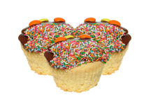 Free Cupcakes Royalty Free Stock Photography - 584237