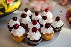 cupcakes Image stock
