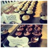 cupcakes Fotografia Stock