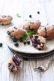 Σπιτικά cupcakes με τα βατόμουρα Στοκ Φωτογραφίες