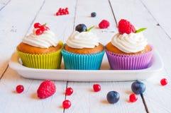 cupcakes Stock Fotografie