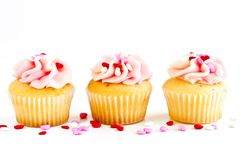 Free Cupcakes Stock Photos - 8516033