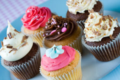 Cupcakes. Assortment of cupcakes on a plate Stock Photography