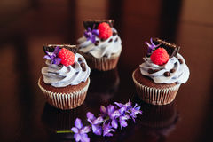cupcakes Photographie stock