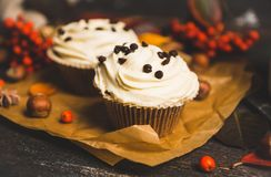 Cupcakes with autumn decorations on the rustic wooden background. Shallow depth of field. Royalty Free Stock Photography
