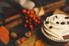 Cupcakes with autumn decorations on the rustic wooden background. Shallow depth of field. Royalty Free Stock Photo