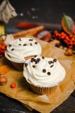 Cupcakes with autumn decorations on the rustic wooden background. Shallow depth of field. Stock Image
