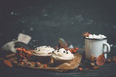 Cupcakes with autumn decorations on the rustic wooden background. Shallow depth of field. Stock Images