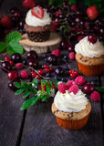 Cupcakes and berries on dark wooden background. Stock Photo