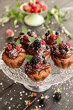 Cupcakes with bio chocolate and berry for a sweet holiday buffet Royalty Free Stock Photography