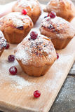 Cupcakes with black currant jam Stock Images