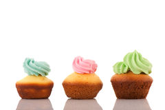 Cupcakes with blue pink and green cream Stock Image