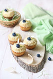 Cupcakes with Blueberries Stock Photos