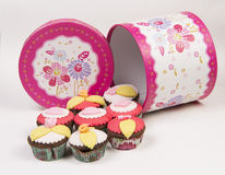 Cupcakes with  box  on white background Royalty Free Stock Photo